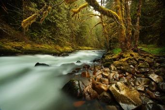 creek-731483_1920